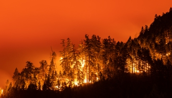 Panther Gulch Fire: New wildfire in Southern Oregon grows to